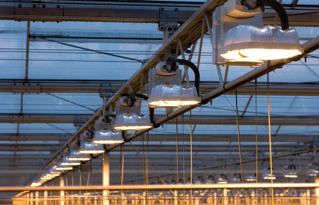 Illuminazione impianti produzione di serre in film per